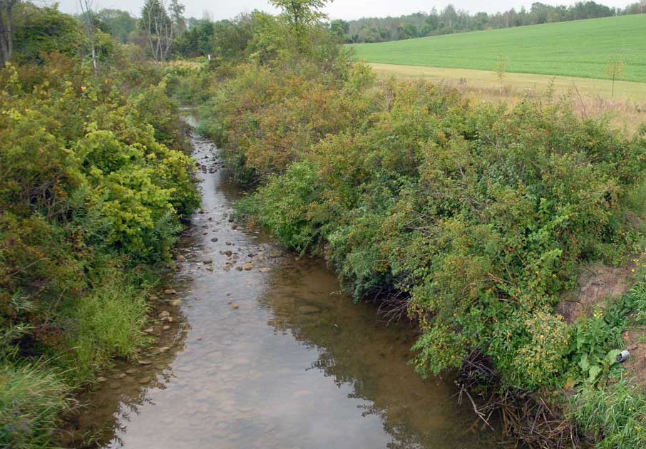 Financial, technical support to help improve stormwater management on urban and rural properties