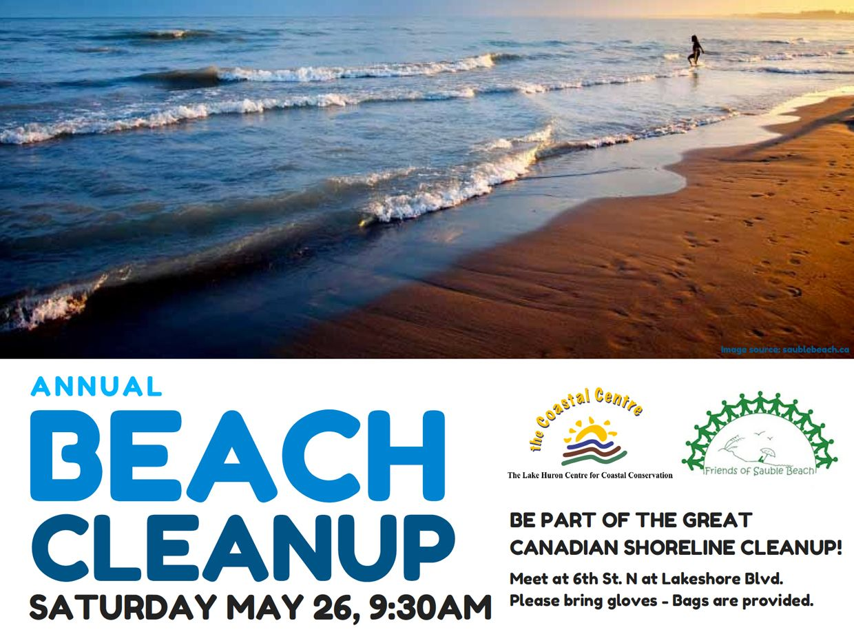 Shoreline cleanups for Lake Huron are coming up - including May 26 events in Sarnia and Sauble Beach.